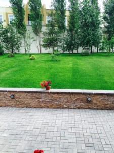 """Фотографии """"Мой сад"""" - Западный 2"""
